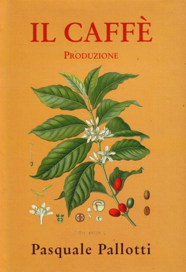 caffè e produzione