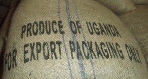 ucda Uganda usda