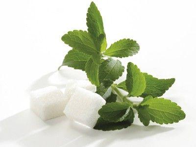 la stevia