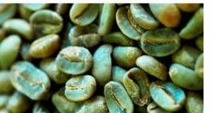 comitato italiano caffè