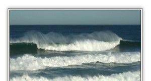 terza onda third wave