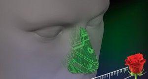 naso artificiale computer