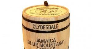 barilotto caffè jamaica blue mountain
