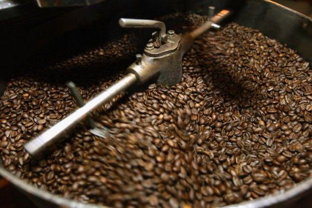 torrefazione caffè competitive data