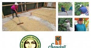 sandalj women project