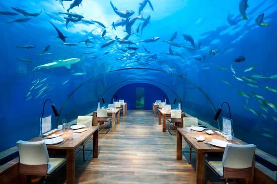 bar sotto l'oceano a sei metri