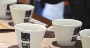 cup tasting sigep 2017