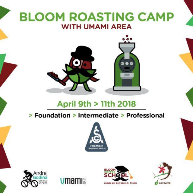 bloom roasting camp