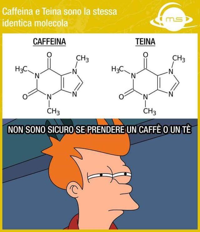 caffeina e teina sono la stesso cosa
