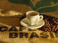 raccolto Brasile coffee board Matas de Rondônia
