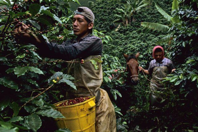 تغییرات آب و هوایی در کلمبیا