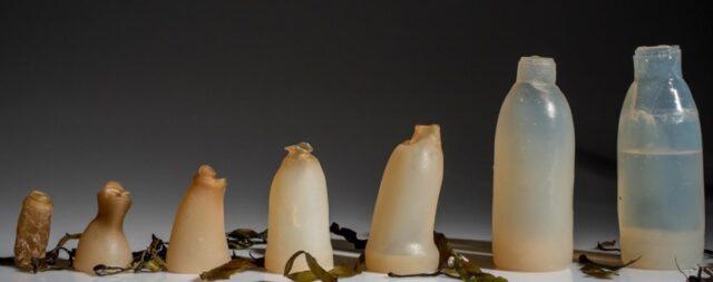 plastica biodegradabile compostaggio