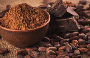 ghana costa d'avorio ferrero cina mostra cacao e zucchero cioccolato dolore