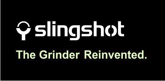 Logo e claim slingshot