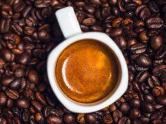 specialty coffee Pieter Van Hest prezzi