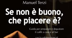 copertina libro Manuel terzi