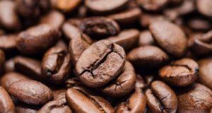 chcchi caffè torrefatto criogenia