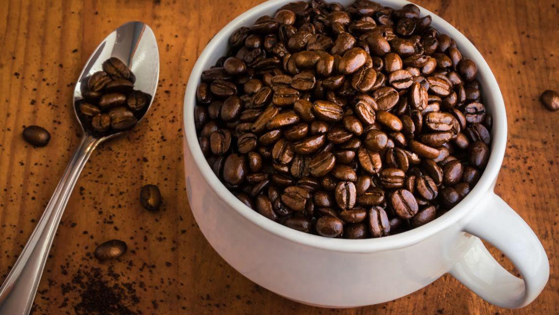effetto flavonoidi farmaci sveglia caffeina bere caffè caffè e antibiotici nutrigenetica