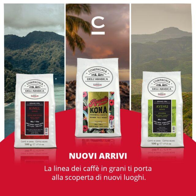 شرکت caffe corsini از arabica