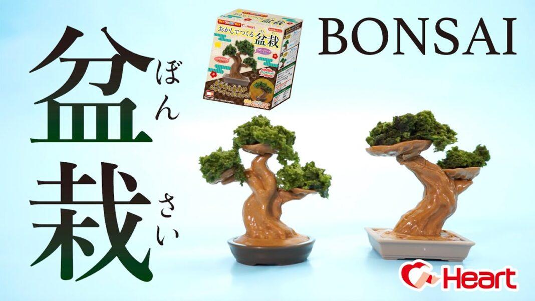 Okashi de Tsukuru Bonsai